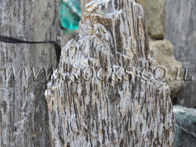 סלע מקופלת זהב