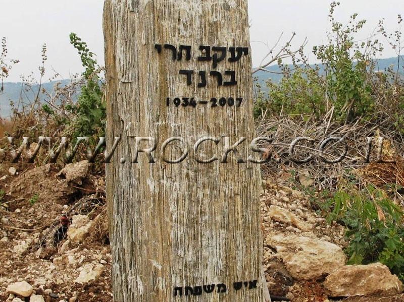 מצבות מסלע מקופלת זהב
