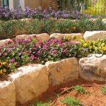 סלעים לגינה היתרון שבטבע