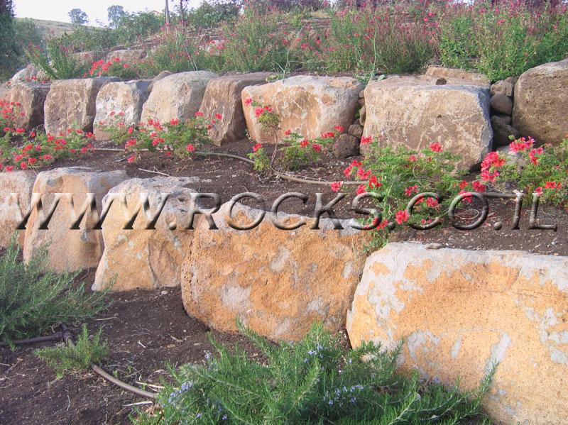 סלע בזלת שטוח