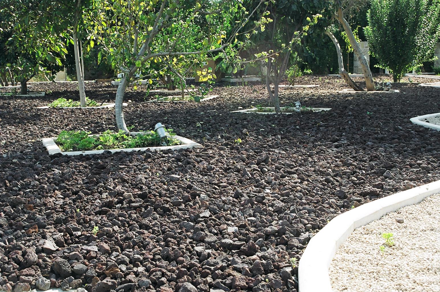 טוף שחור רעיונות לגינה סלעים לגינה