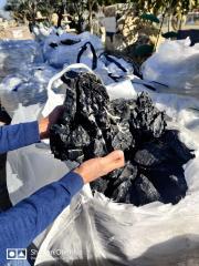 פריקת מכולות סלעי בזלת קוריאנית בכפר הסלעים