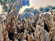כפר הסלעים - יבואן הסלעים הגדול בישראל