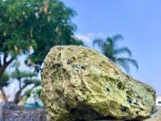 סלע לבה ירוקה בייבוא בלעדי ממלזיה