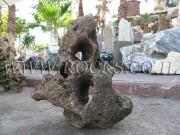 Freckled Rock