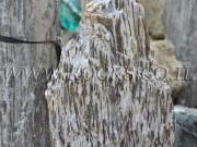 Gilded Folded Rock