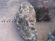 סלע מקושקשת