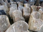 כיסאות מאובנים